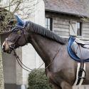 Bonnet anti-mouche cheval Wellington Velvet Basic - Kentucky