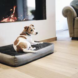 Panier pour chien Soft Pillow - Kentucky