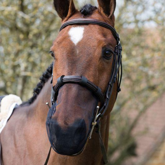 Protège-Naseaux cheval anti-ensencement - Equilibrium