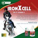 Vitamines cheval de sport 3,75 L Iron X Cell - Trm