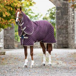 Couverture de box cheval avec couvre cou Amigo Stable Plus - Horseware