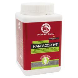 Concentré d'harpagophytum  Harpagophyt - Paskacheval