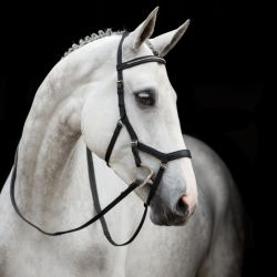 Bridon cuir anatomique cheval Micklem Diamante Rambo - Horseware