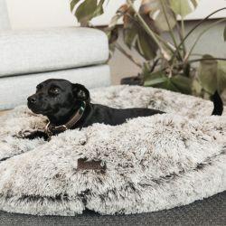Panier pour chien Confort Beignet - Kentucky Dogwear