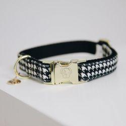 Collier pour chien nid-de-poule - Kentucky Dogwear