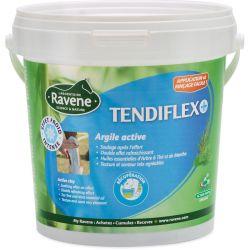 Argile Tendiflex Soin tendon cheval rafraîchissant - Ravene