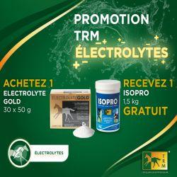 Électrolytes chevaux poudre 30 x 50 g Gold - Trm