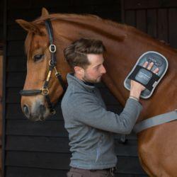 Gant de massage cheval - Equilibrium