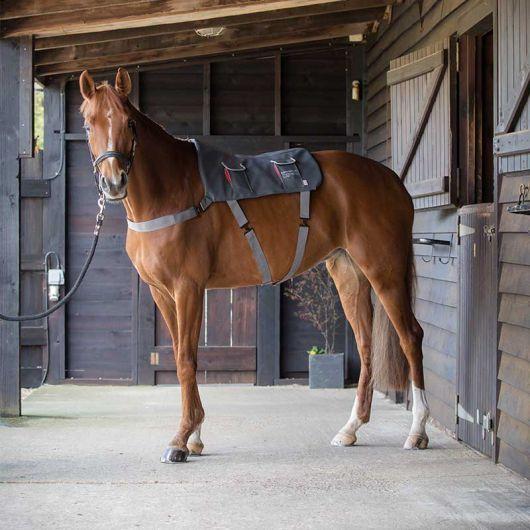Tapis de massage cheval - Equilibrium
