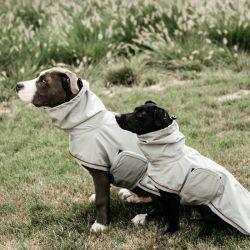 Manteau de pluie pour chien - Kentucky Dogwear