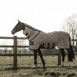 Chemise anti-mouche cheval Mesh - Kentucky Horsewear
