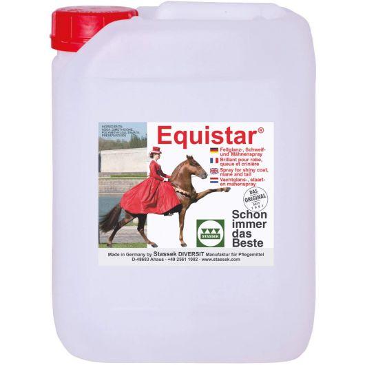 Lustrant démêlant 10 L Equistar - Stassek