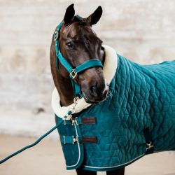 Licol cheval Velvet - Kentucky Horsewear