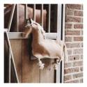 Enrichissement pour chevaux