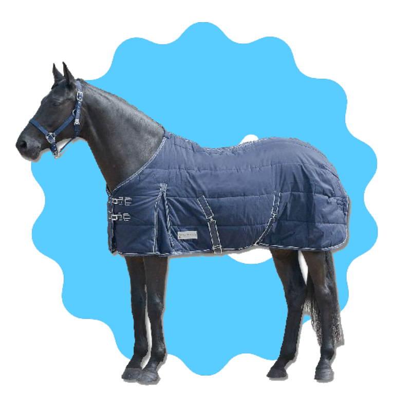brad cheval.jpg
