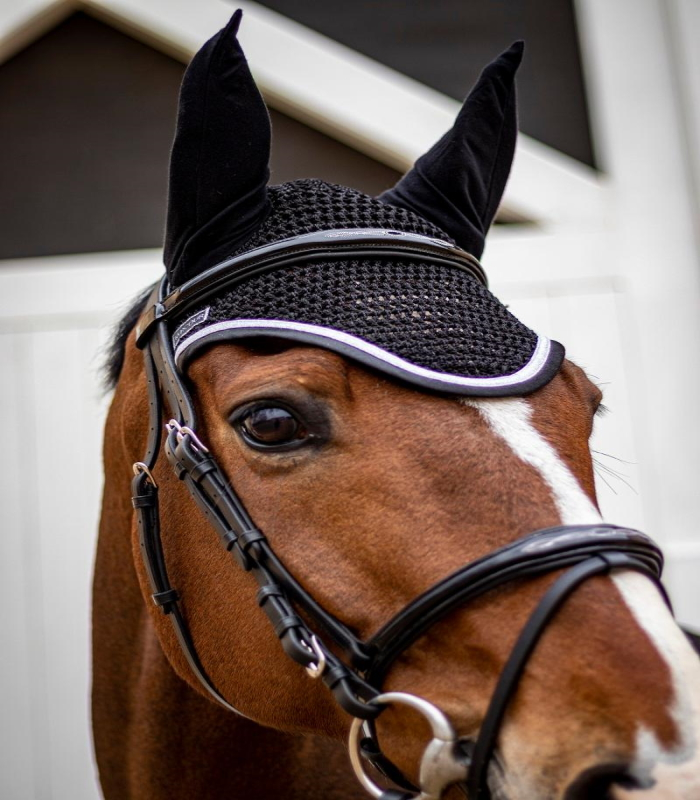 bridon Kylie Harcour - Equestra