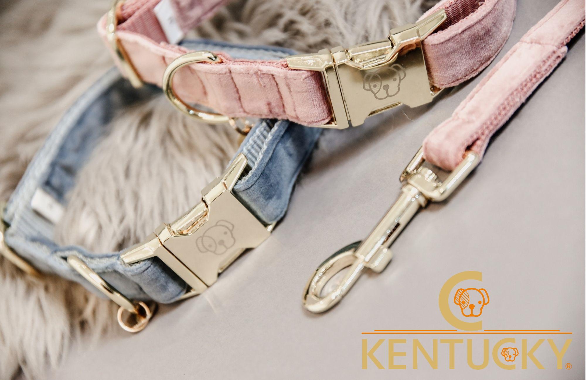 Kentucky Dogwear - Equestra