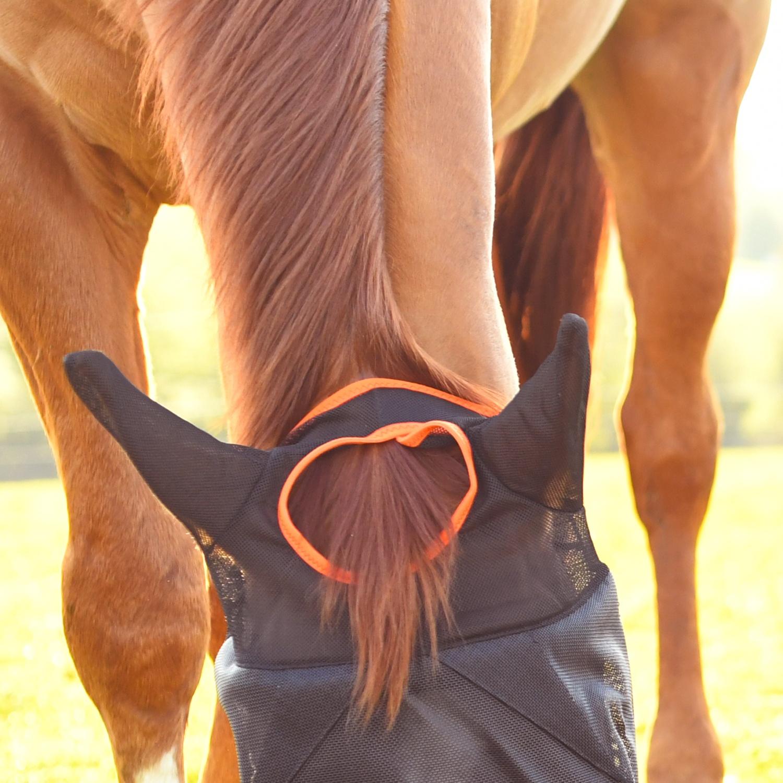 masque anti-mouche cheval midi equilibrium - Equestra