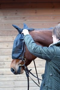 masque anti-mouche net relief cheval equilibrium - Equestra