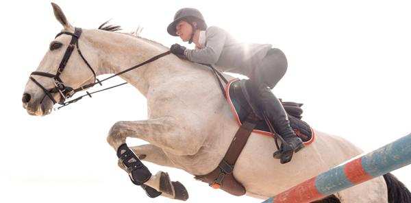 Objets connectés équitation
