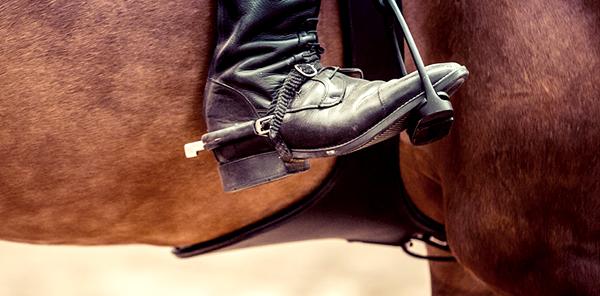Eperons équitation cavalier