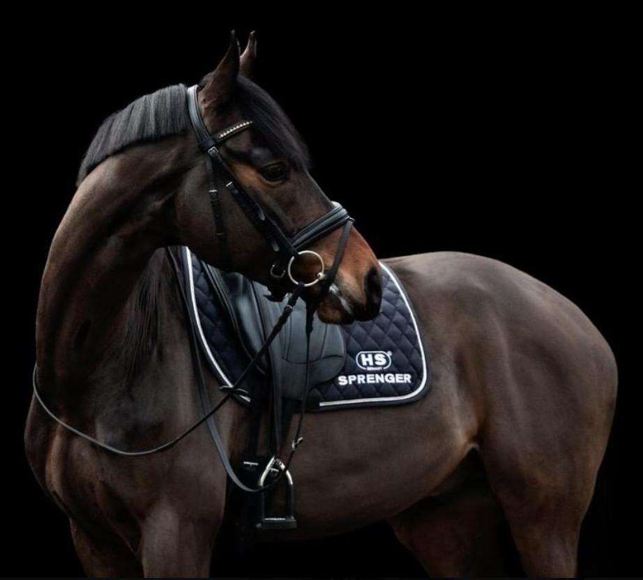 Sprenger - Equestra