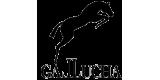 GALLUCHA